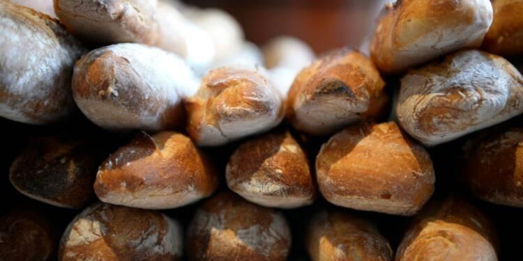 Boulangerie: 1ère baguette à base de farine éthique et équitable