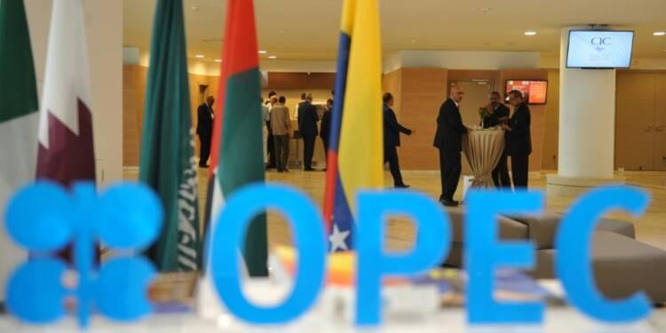 """L'accord de l'Opep est une """"décision très positive"""" mais Moscou n'abaissera pas sa production"""