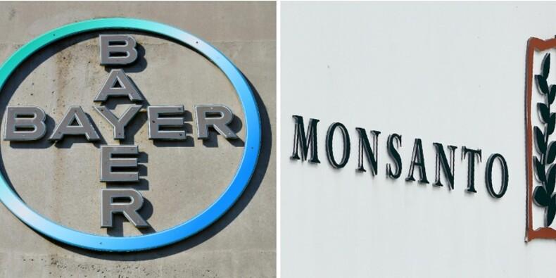 Bayer se défend de vouloir introduire en Europe les OGM de Monsanto