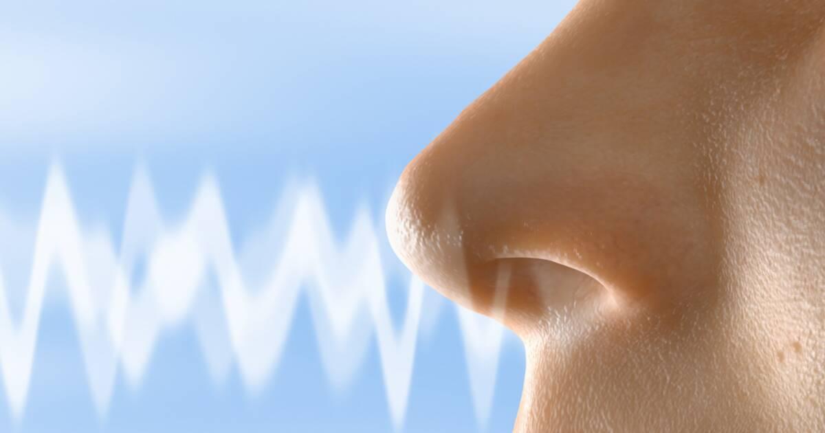 comment les marques jouent avec votre odorat