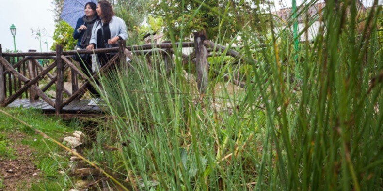 Commune sans pesticides: plus qu'une révolution technique, une révolution culturelle!