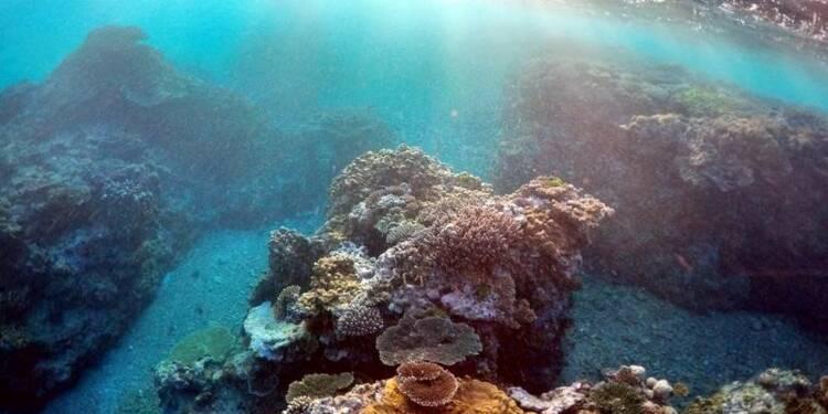Deux touristes français se tuent en plongée sur la Grande Barrière