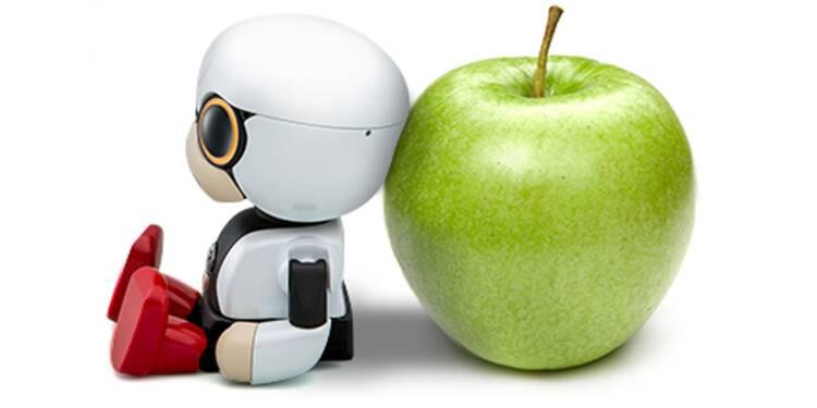 Kirobo Mini : le bébé robot de Toyota pour aider les automobilistes
