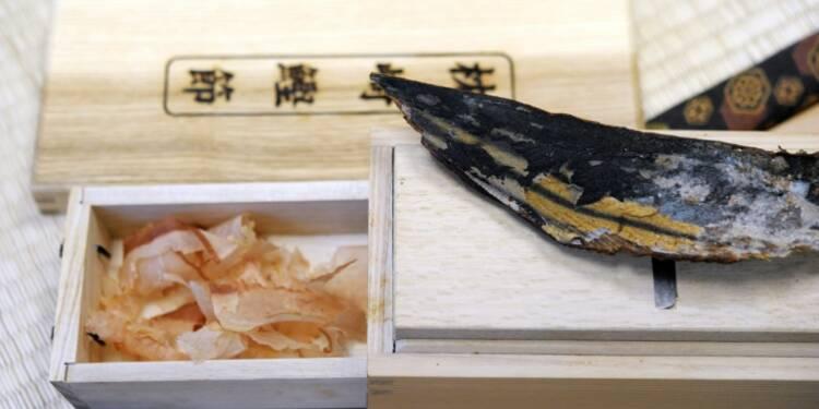 Du Japon à la Bretagne: de la bonite séchée comme il y a 300 ans