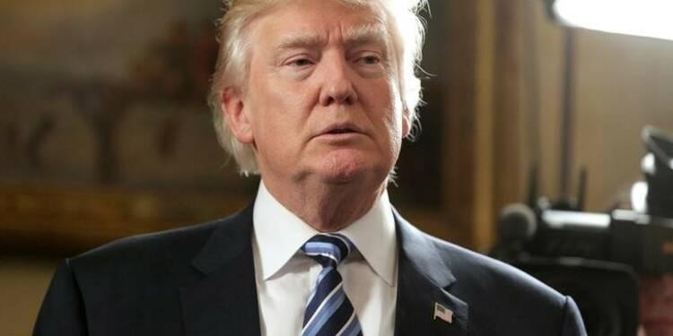 """L'enquête de Trump sur les """"fraudes électorales"""" très critiquée"""