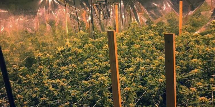 Saisie d'1,7 tonne de cannabis à la frontière franco-espagnole