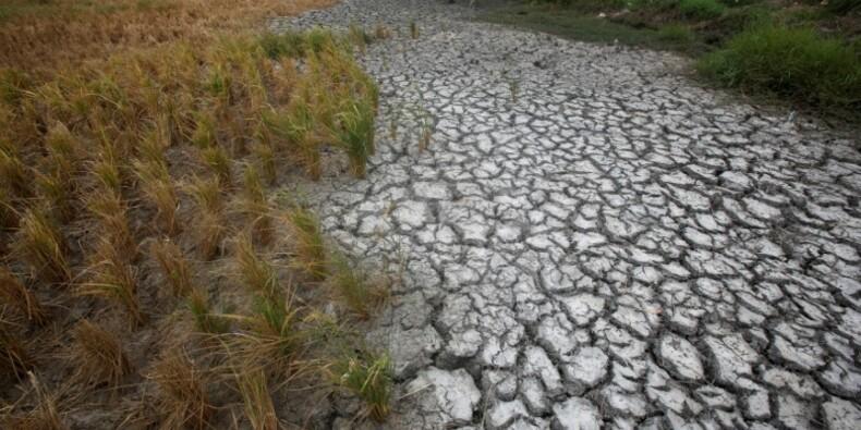 La hausse des températures pourrait dépasser les 2° d'ici 2050
