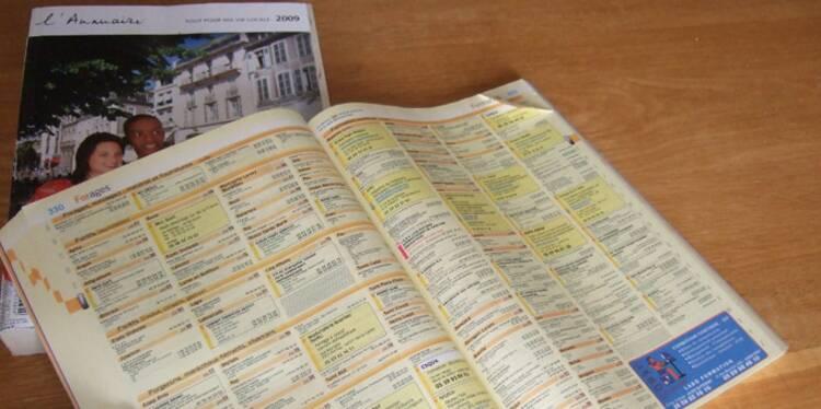 pages jaunes solocal une association d nonce une spoliation des actionnaires. Black Bedroom Furniture Sets. Home Design Ideas