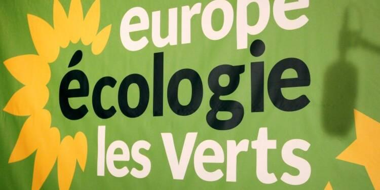 Orphelins de Hulot, les Verts organisent une primaire