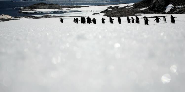 Une partie de l'Antarctique se refroidit à nouveau