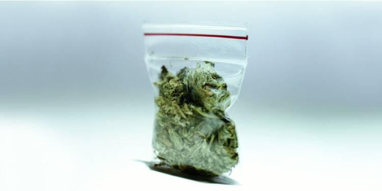 Cannabis : c'est devenu une véritable industrie
