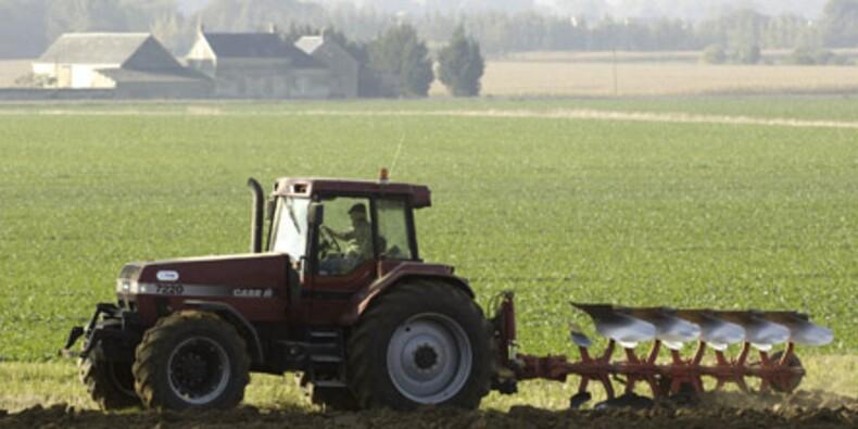 Agroalimentaire : la PAC absorbe 40% du budget de l'Union
