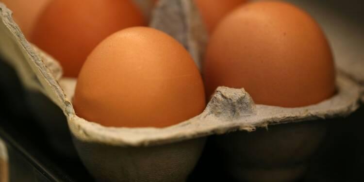 Alimentation: Monoprix ne commercialise plus d'oeufs en batterie