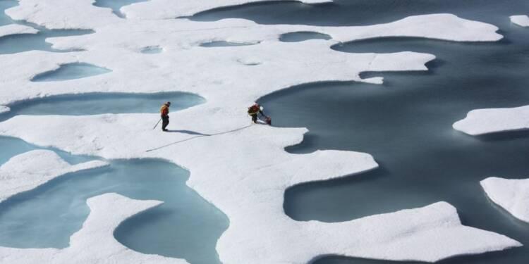 L'année 2016 devrait être la plus chaude jamais enregistrée