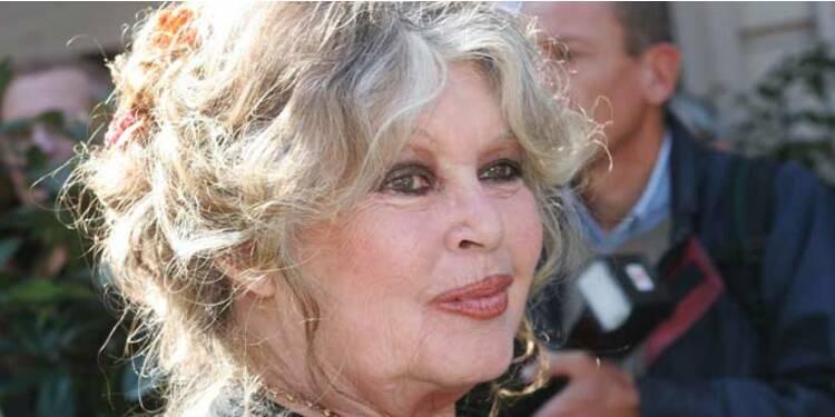 Du Rififi dans le business de Brigitte Bardot