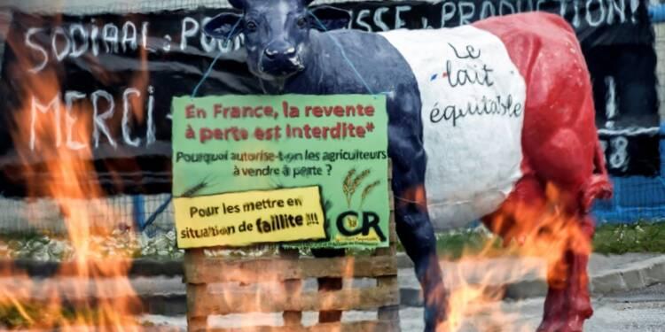 Crise laitière: Bruxelles va mettre la main à la poche