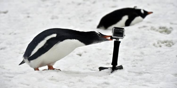 GoPro cherche à séduire les développeurs pour élargir les usages de ses caméras