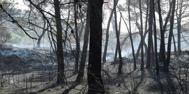 Les violents incendies au nord de Marseille désormais maîtrisés