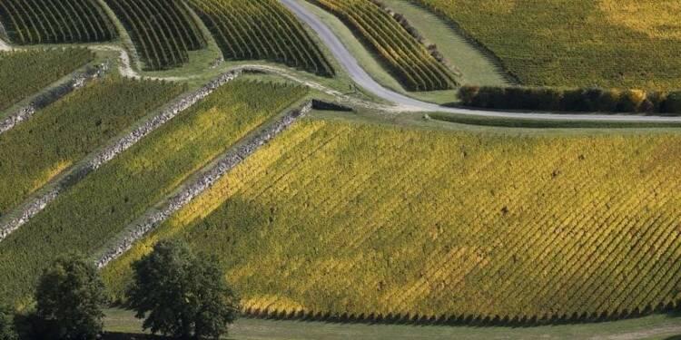 Recours anti-LGV des viticulteurs au sud de Bordeaux