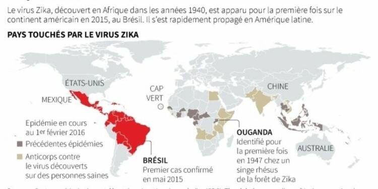 L'épidémie de Zika au Brésil plus ample qu'on ne le pensait