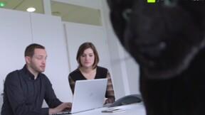 Zoom sur un métier : les métiers du marketing chez AkzoNobel