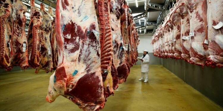 Anomalies constatées dans 31% des abattoirs, selon un rapport