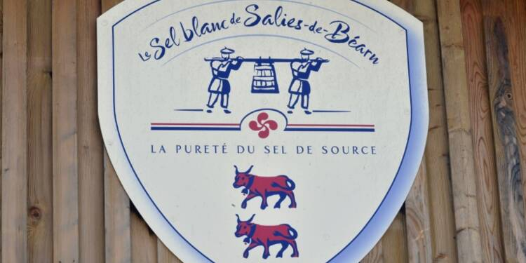 Pyrénées-Atlantiques: le sel gemme, trésor classé de Salies-de-Béarn