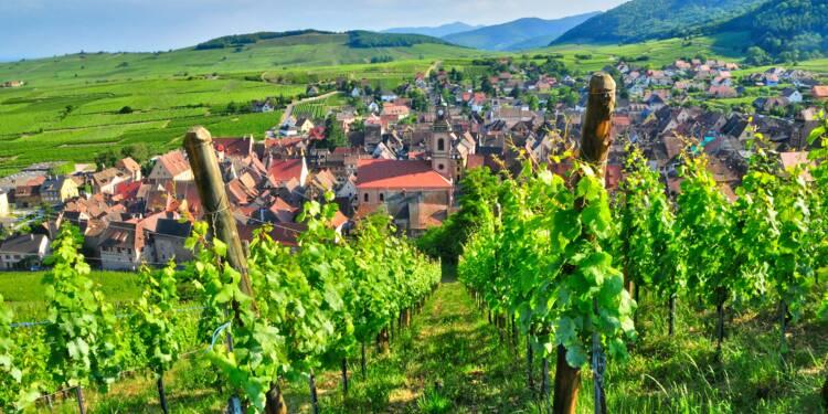 Week-end : partez sur la route des vins
