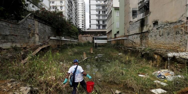L'OMS contre le report des JO de Rio malgré le virus Zika