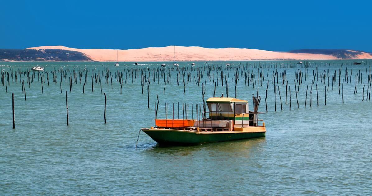 Bassin d 39 arcachon les bonnes tables o croiser stars - Office de tourisme bassin d arcachon ...