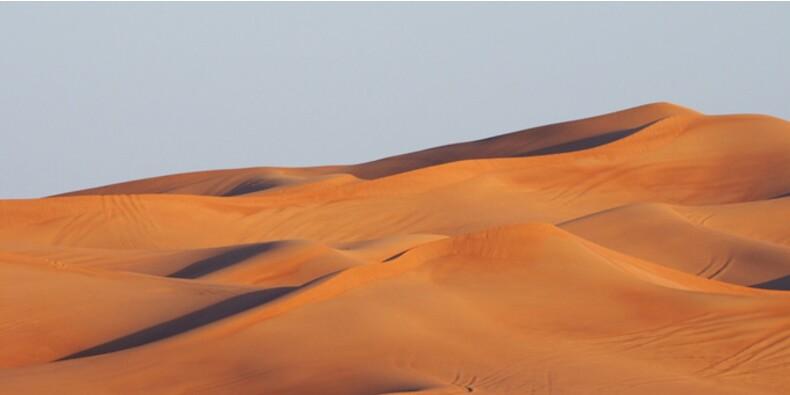 Cure d'austérité pour l'Arabie saoudite face à la chute des cours du pétrole