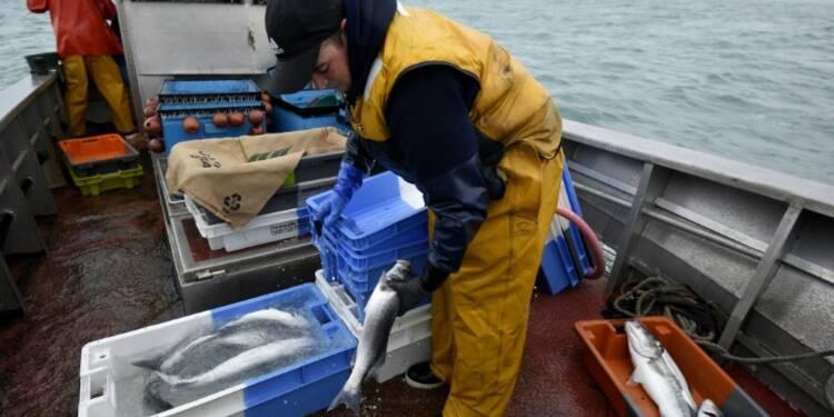 Les capitaux étrangers s'ancrent dans la pêche française