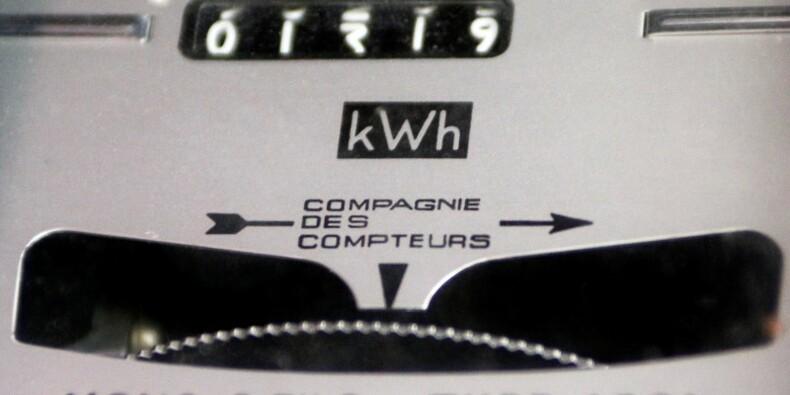 Royal annonce une baisse des tarifs de l'électricité le 1er août