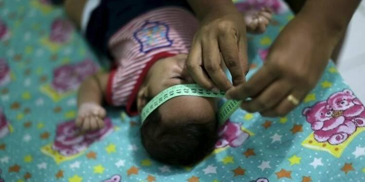 Davantage de cas de microcéphalie liés au virus Zika au Brésil