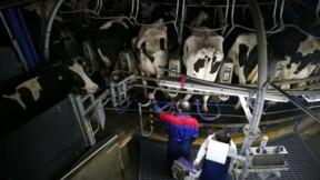 Les producteurs laitiers annoncent un blocus de Lactalis