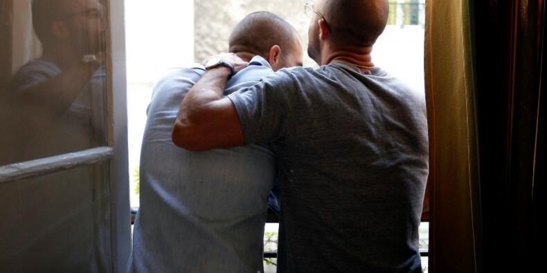 Fillon veut fermer l'adoption plénière aux couples homosexuels