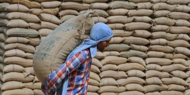 FAO: en juin plus forte hausse des prix alimentaires en 4 ans