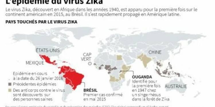 "Le virus Zika prend des ""proportions alarmantes"", juge L'OMS"