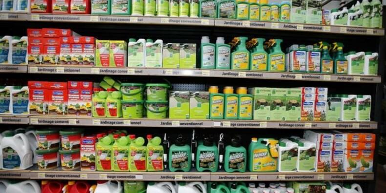 Pas d'accord à l'UE sur le glyphosate
