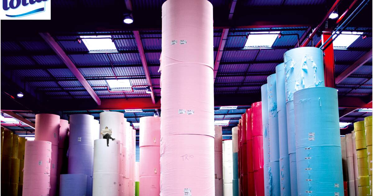 Lotus Le Rouleau Compresseur Du Papier Toilette Capitalfr