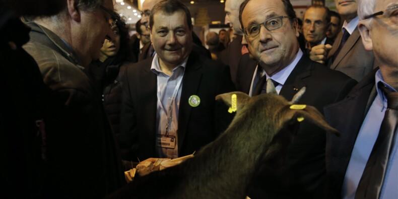 Ouverture du Salon de l'agriculture mouvementée pour François Hollande