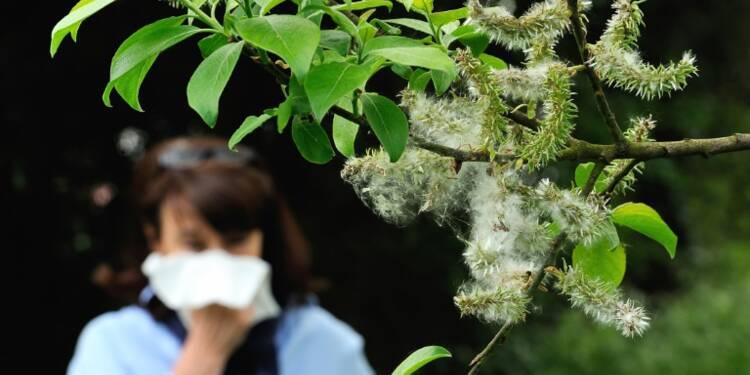 Voyage au coeur des acariens chez ALK, le géant danois des allergies respiratoires