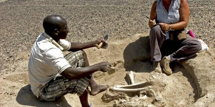 Le plus vieux massacre de l'humanité mis au jour au Kenya