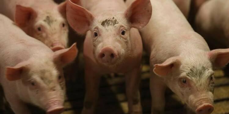 Crise des agriculteurs : Carrefour perquisitionné, Le Foll à Bruxelles