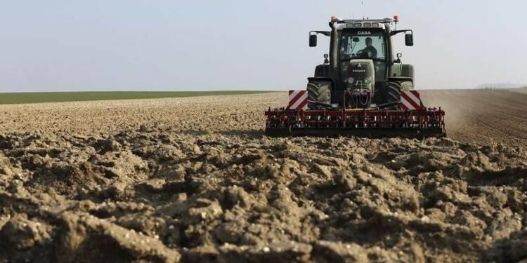 Les aides pour la sécheresse revues à la hausse dans l'élevage