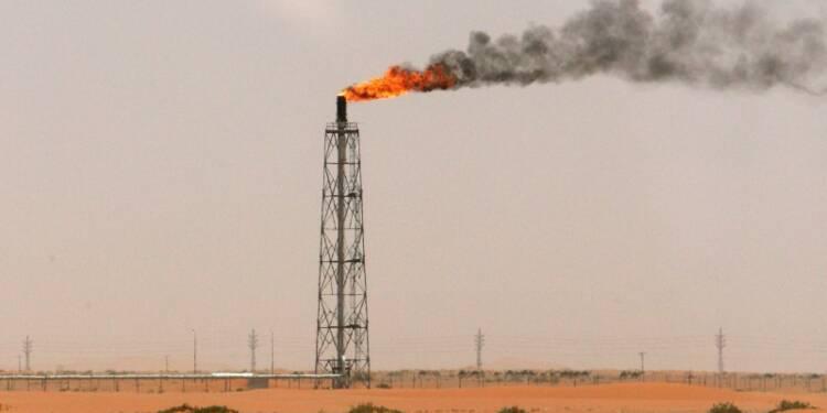 """L'Arabie saoudite veut rompre son """"addiction"""" au pétrole"""