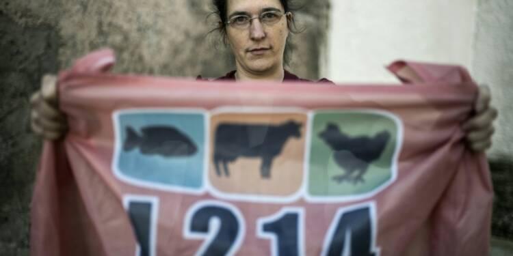 L214:les mouvements anti-viande bousculent l'élevage français
