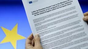 """Tusk présente un projet de réformes pour prévenir un """"Brexit"""""""