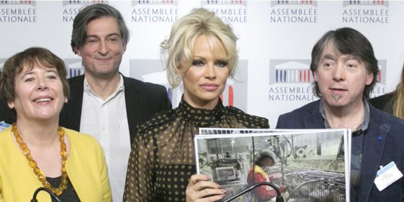 Risque de pénurie de canards en France : mauvaise nouvelle… sauf pour Pamela Anderson