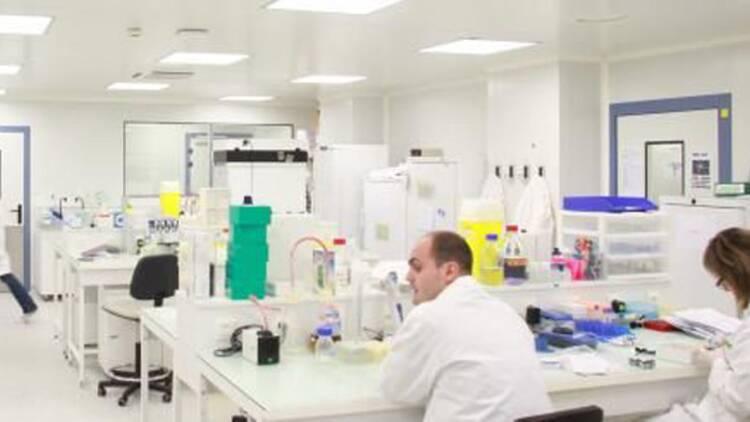 Innate, le spécialiste de l'immuno-oncologie, séduit Sanofi et la Bourse
